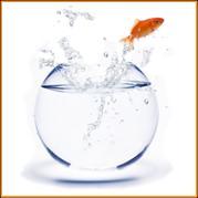 L'insatisfaction multiplie par 5 l'envie d'infidélité des clients !