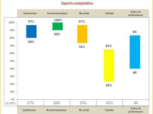 Satisfaction Recommandation & Ré-achat (SRR) chez les Experts Comptables